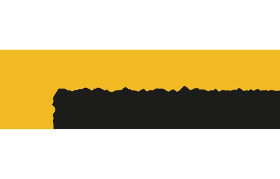 20170915184358-logo-singravedad.png